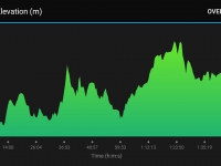18km Race Profile